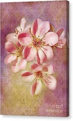 India Hawthorne Canvas Print by Judi Bagwell