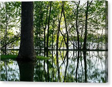 Lake Nokomis In A Wet Spring Canvas Print by Jim Hughes