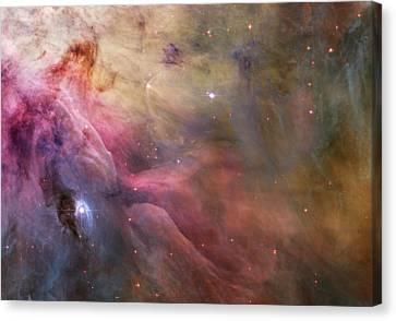 Orion Nebula Canvas Print by Sebastian Musial