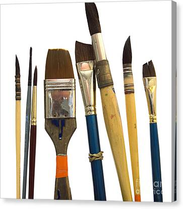 Paintbrush Canvas Print by Bernard Jaubert