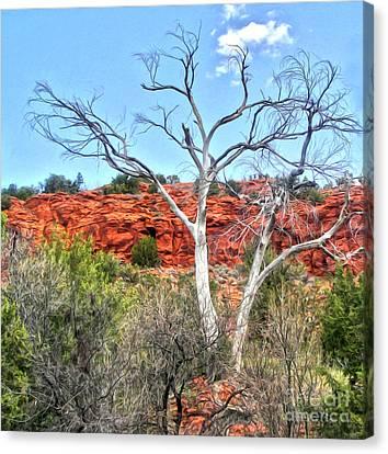 Sedona Arizona Dead Tree Canvas Print by Gregory Dyer