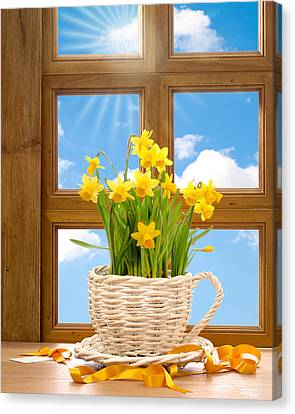 Spring Window Canvas Print by Amanda Elwell
