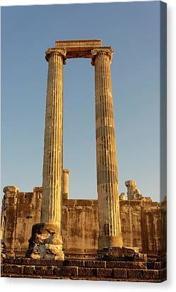 Temple Of Apollo Canvas Print by David Parker