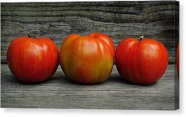 3 Tomatoes Canvas Print by Luke Moore