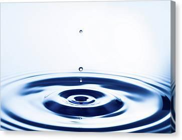 Water Droplets Canvas Print by Wladimir Bulgar