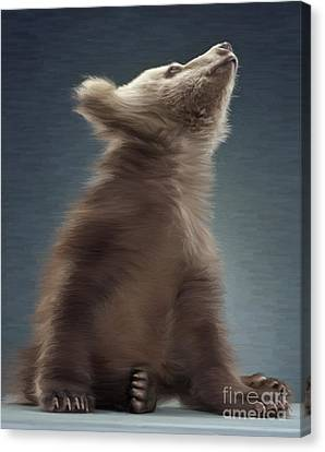 Young Brown Bear Canvas Print by Aleksey Tugolukov