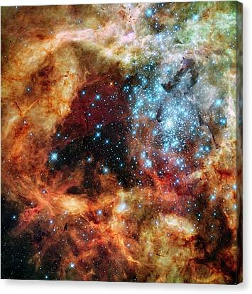 30 Doradus Star Clusters Canvas Print by Nasa/esa/stsci/e. Sabbi