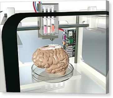 3d Printed Brain Canvas Print by Christian Darkin