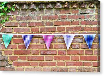 Bunting Canvas Print by Tom Gowanlock