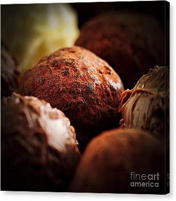 Chocolate Truffles Canvas Print by Elena Elisseeva