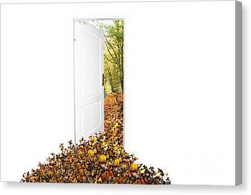 Door To New World Canvas Print by Michal Bednarek