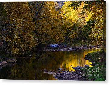 Fall Color Gauley River Headwaters Canvas Print by Thomas R Fletcher