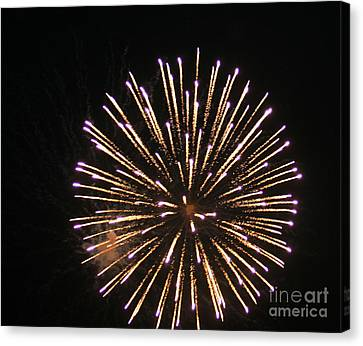 Fire Works On The Fourth Of July  Canvas Print by Larry Stolle