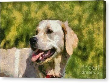Golden Retriever Portrait Canvas Print by George Atsametakis
