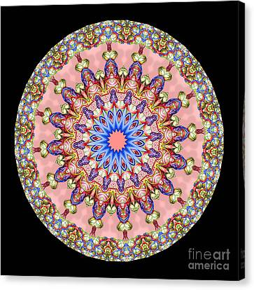 Kaleidoscope Anatomical Illustrations Seriesi Canvas Print by Amy Cicconi