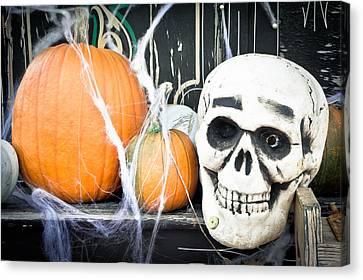 Pumpkins Canvas Print by Tom Gowanlock