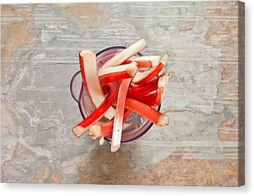 Rhubarb Canvas Print by Tom Gowanlock
