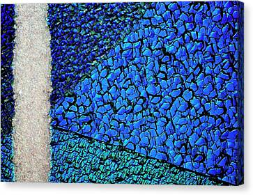 Silicon Solar Cell Canvas Print by Antonio Romero