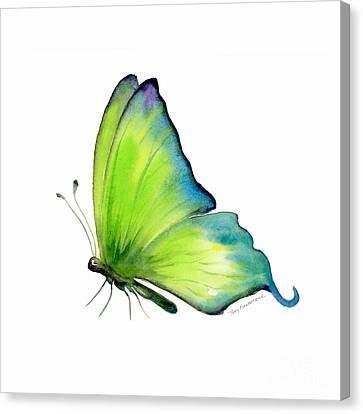 4 Skip Green Butterfly Canvas Print by Amy Kirkpatrick