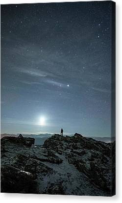 Stargazing Canvas Print by Tommy Eliassen