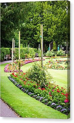 Summer Garden Canvas Print by Tom Gowanlock
