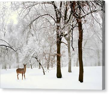 Winter's Breath Canvas Print by Jessica Jenney