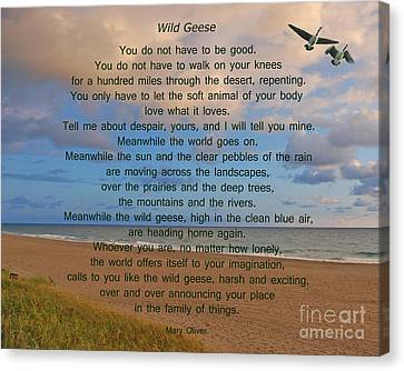 40- Wild Geese Mary Oliver Canvas Print by Joseph Keane