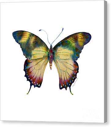 41 Yellow Kite Butterfly Canvas Print by Amy Kirkpatrick
