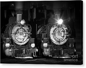 482 And 486 Canvas Print by Inge Johnsson