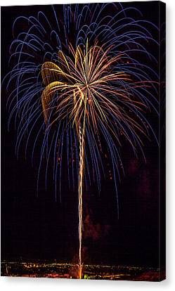 4th July #16 Canvas Print by Diana Powell