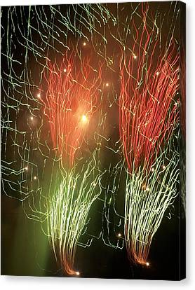 4th Of July Canvas Print by Tammy McDougall