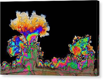 Dopamine Drug Crystals Canvas Print by Antonio Romero
