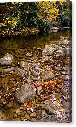 Fall Color Gauley River Canvas Print by Thomas R Fletcher