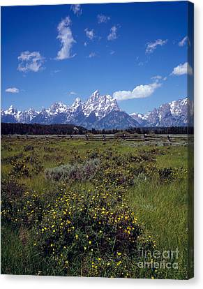 Grand Teton National Park Canvas Print by Rafael Macia