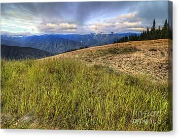 Hurricane Ridge Canvas Print by Twenty Two North Photography