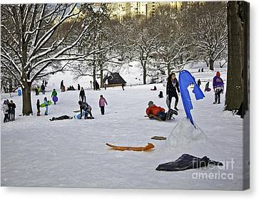 Snowboarding  In Central Park  2011 Canvas Print by Madeline Ellis
