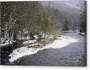 Spring Snow Williams River  Canvas Print by Thomas R Fletcher