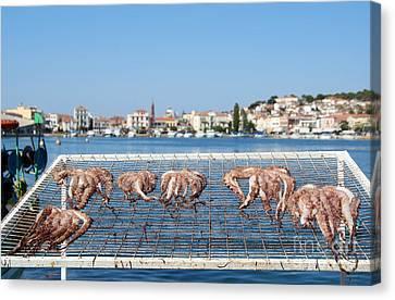 City Of Mytilini Canvas Print by George Atsametakis