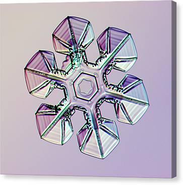 Snowflake Canvas Print by Kenneth Libbrecht