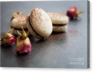 French Macaroons Canvas Print by Kati Molin