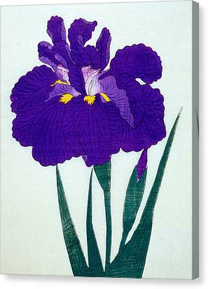 Japanese Flower  Canvas Print by Japanese School