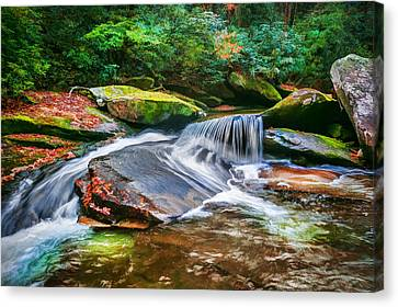 Waterfalls Great Smoky Mountains Painted Canvas Print by Rich Franco