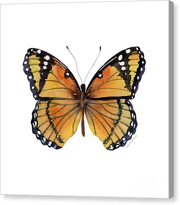 76 Viceroy Butterfly Canvas Print by Amy Kirkpatrick