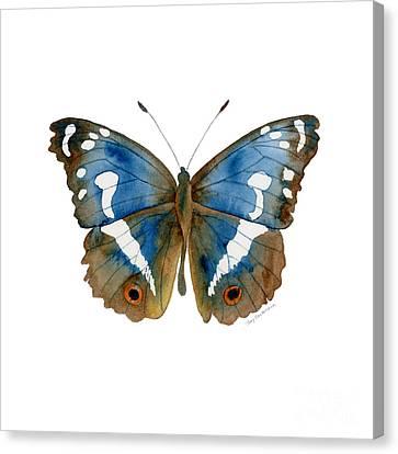 78 Apatura Iris Butterfly Canvas Print by Amy Kirkpatrick