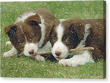 Border Collie Dog Portrait Canvas Print by Olde Time  Mercantile