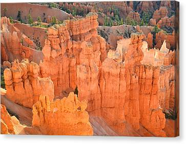 Bryce Canyon Canvas Print by Ray Mathis