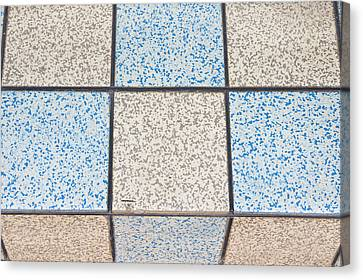 Tiles Canvas Print by Tom Gowanlock