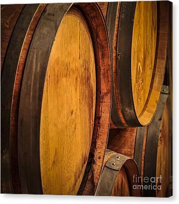 Wine Barrels Canvas Print by Elena Elisseeva