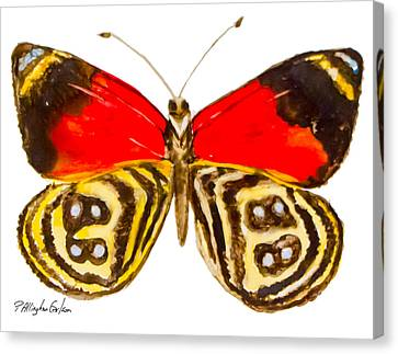 88  Butterfly Canvas Print by Patricia Allingham Carlson