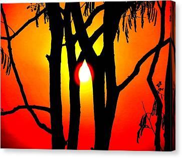 Nature Canvas Print by Viren Rana